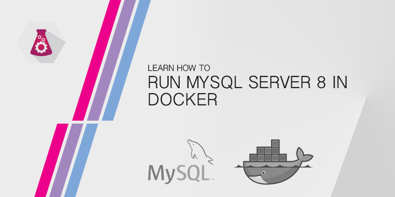 Running MySQL Server 8 in Docker