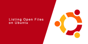 Listing Open Files on Ubuntu using lsof